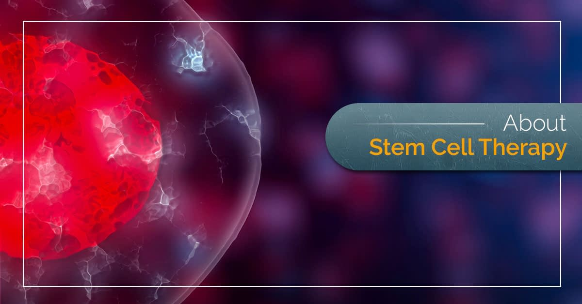 About Stem Cell Therapy