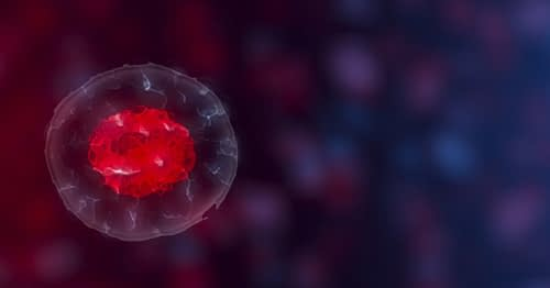 The Many Benefits of Stem Cell Therapy, Part 1