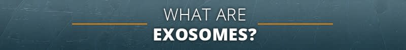 What Are Exosomes?